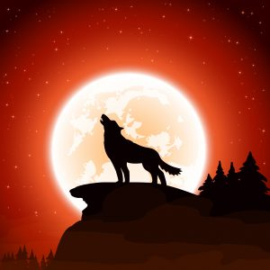 Orange Halloween night background with wolf and Moon, illustration.